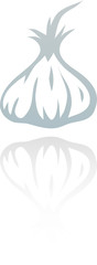 line art garlic isolated on white