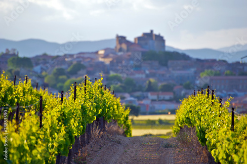Leinwanddruck Bild The Chateau of Puissalicon in the Languedoc