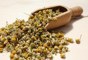 Cucchiaio di legno con fiori  di camomilla essiccati