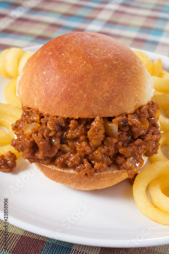 Sloppy Joe & Fries