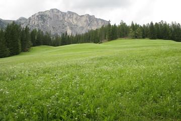 Sudtirol desktop