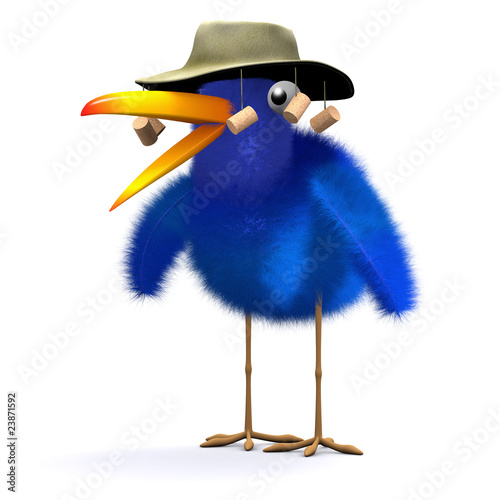 3d Blue bird goes to Australia