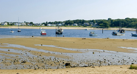 low tide on the coastline in Maine, usa