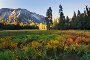 The beautiful glade in Yosemite on a sunset