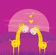 roleta: Two yellow african giraffes in love. VECTOR ILLUSTRATION