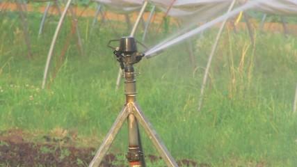 Bewässerungsanlage I