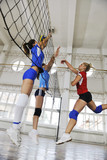 Fototapety girls playing volleyball indoor game