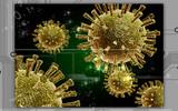 Avian virus poster