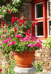 Summer in the Garden - Sommer im Garten