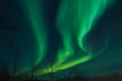 Northern Lights swirling in the night sky