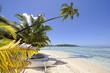 Dream beach in Papetoai, Moorea, French Polynesia