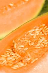 Sunny melon