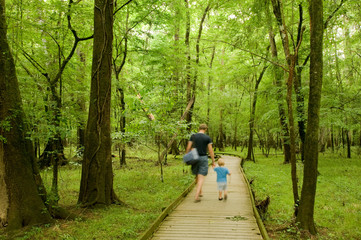 Father and son walking the footpath of Congaree national park