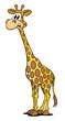 Giraffe stehend verdutzt