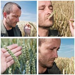 composition agriculteur