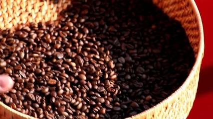 Kaffeeröstung Qualitätskontrolle