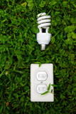 effiicient light bulb and switch in green grass