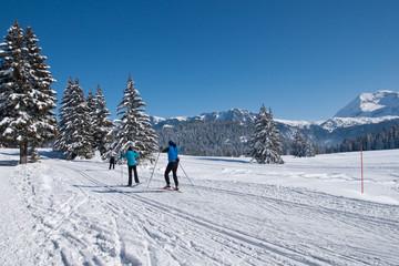 Ski de fond à Larselle #2