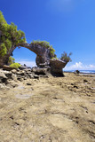 Natural Arch, Neil Island, Beach 2, Andamans poster