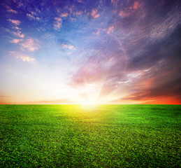 Green Field and Beautiful Sunrise