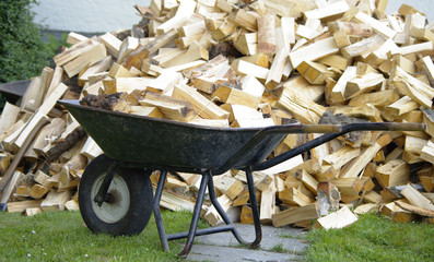 Holz - Energie der Zukunft