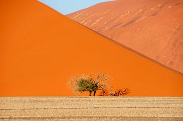 Giant dunes