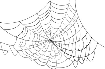 simple black web illustration
