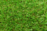 artificial  grass turf poster