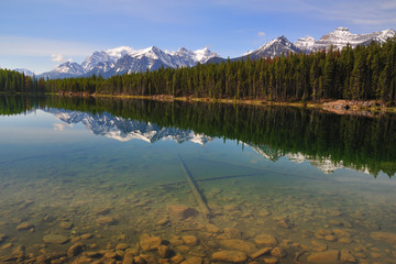 Herbert Lake Reflections