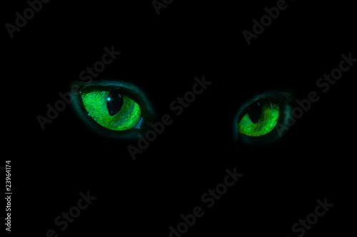 Fototapeten,eye,übel,black,grün