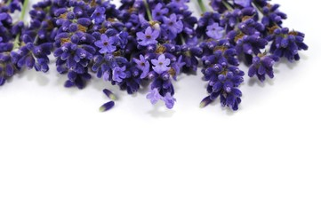 Aroma, Provence