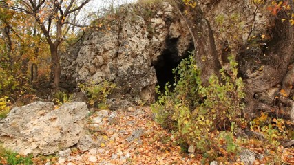 cave in rocks among trees in autumn