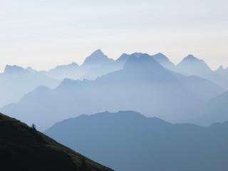 Blaue Bergkette, Tanne