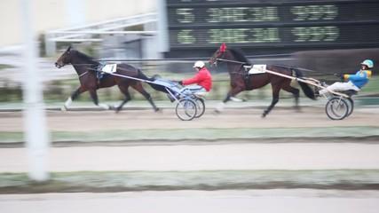 teams with horses and jockeys close up on hippodrome