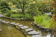 A stream and  path from stones