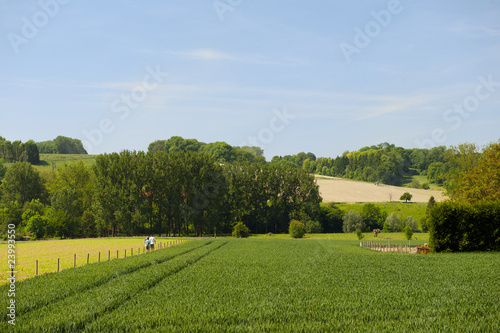 Landscape with hills and agriculture