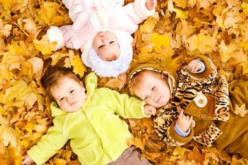 Babies on leaves