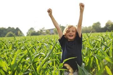 Junge jubelt im Mais Feld
