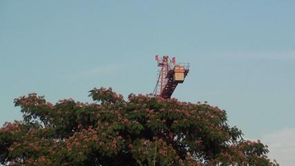 Large construction cranes-hd-pal