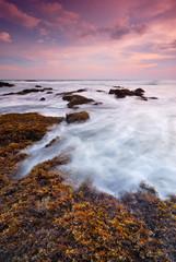 Sea waves splash