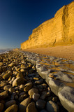 Golden sandstone cliffs & low tide, Burton Bradstock, Dorset, UK