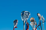 Many lacrosse sticks in the air poster