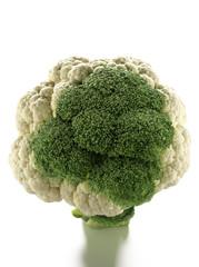 chou-fleur-brocoli transgénique