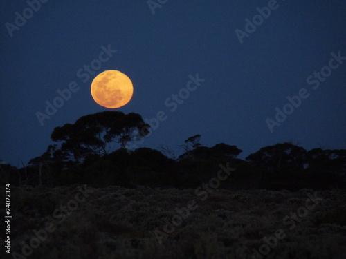 Mond im Outback Australiens - 24027374
