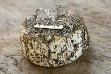 fromage de brebis corse