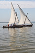 Barcas de vela latina