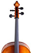 Cello's scroll