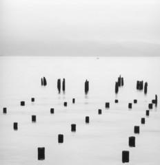 Silhouette of pilings in water