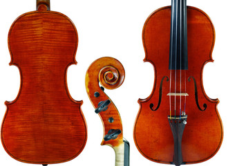 Anatomy of Violin