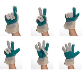 collezione di mani